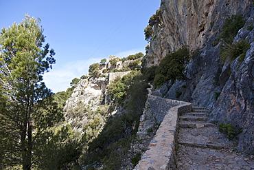 Castell d Alaro, castle Alaro, Alaro, Serra de Tramuntana, UNESCO World Nature Site, Mallorca, Spain