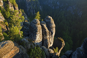 Rocks at the Wehlgrund valley, Bastei Rocks, National Park Saxon Switzerland, Elbe Sandstone Mountains, Saxony, Germany, Europe