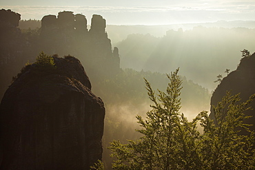 View from Felsenburg Neurathen over the Wehlgrund valley onto the Goose Rocks, Bastei Rocks, National Park Saxon Switzerland, Elbe Sandstone Mountains, Saxony, Germany, Europe