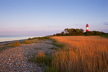 Falshoeft lighthouse in the evening light, Pommerby, Baltic Sea, Schleswig-Holstein, Germany, Europe
