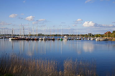 View of marina, Arnis, Schlei fjord, Baltic Sea, Schleswig-Holstein, Germany, Europe