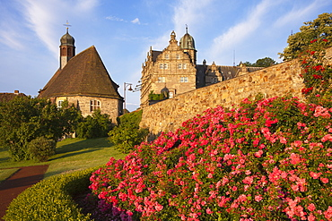 Roses at the gardens of Haemelschenburg castle, church St Mary, Emmerthal, Weser Hills, North Lower Saxony, Germany, Europe