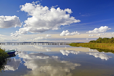 Reflection of clouds at Martinshafen near Neuhof, Grosser Jasmunder Bodden, Island of Ruegen, Mecklenburg Western Pomerania, Germany, Europe