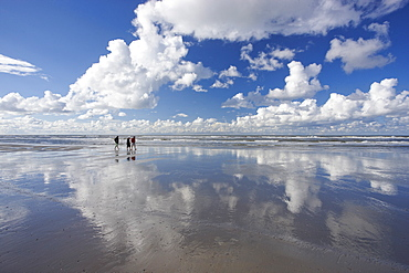 High tide at the North Beach, Island of Spiekeroog, East Frisian Islands, Lower Saxony, Germany, Europe