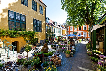 Tipical back houses in Flensburg, Flensburg Fjord, Schleswig-Holstein, Germany