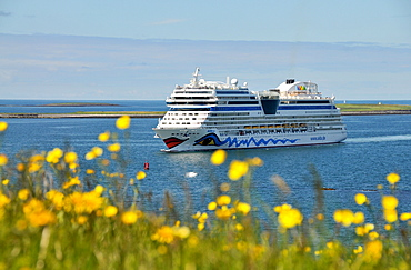 Cruise ship AIDA Mar Off shore, Reykjavik, Iceland, Europe