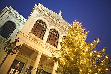 Illuminated Christmas tree in front of the state theater at Gaertnerplatz, Munich, Bavaria, Germany