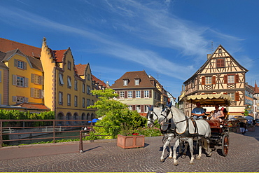 Horse drawn carriage in front of half timbered houses, Little Venice, Colmar, Alsace, France, Europe