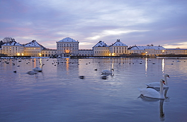 View over swan lake at Nymphenburg Castle in the evening, Munich, Bavaria, Germany