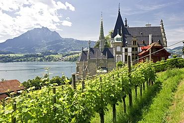 Meggenhorn castle with Mount Pilatus in the background, Lake Lucerne, canton Lucerne, Switzerland, Europe