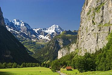 Sunlit meadow at Lauterbrunnen Valley, canton of Bern, Switzerland, Europe