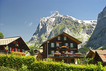 Houses at the village of Grindelwald and Mount Wetterhorn, canton of Bern, Switzerland, Europe