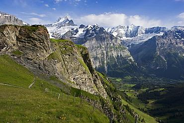 the First above Grindelwald and Schreckhorn, canton of Bern, Switzerland, Europe
