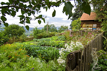 Cottage garden with beehives, Styria, Austria