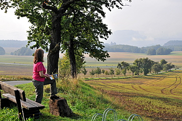 Bench near Rathewalde with view to the Lilienstein, Saxonien Switzerland, Saxony, Germany, Europe