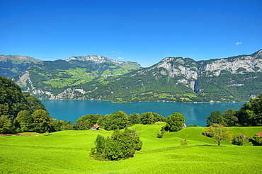 View of lake Walensee, Amden and Mattstock, St. Gallen, Switzerland, Europe