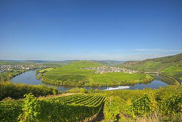 Moselle sinuosity at Trittenheim, Moselle, Rhineland-Palatine, Germany