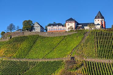 View at the Marienburg abbey, Punderich, Moselle, Rhineland-Palatine, Germany