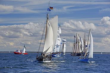 Sailing ships on Baltic Sea on their way to Hanse Sail, Rostock Warnemuende, Mecklenburg Western Pomerania, Germany, Europe