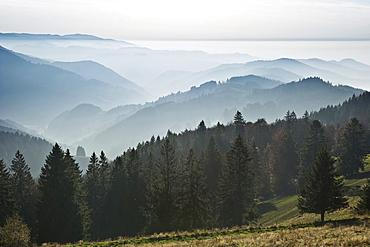 View from Schauinsland mountain onto the Muenstertal valley, near Freiburg im Breisgau, Black Forest, Baden-Wuerttemberg, Germany, Europe