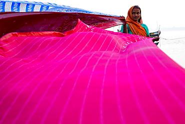 Woman dries sari cloths on banks of Ganges river, Simaria, Bihar, India