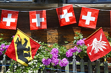 Farmhouse with Swiss flags, Gstaad, Saanenland, Bernese Oberland, Switzerland, Europe