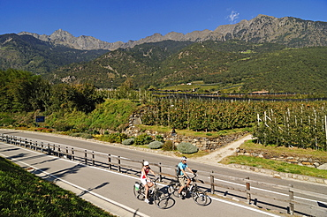 view from Algund towards Meran, Couple on electric bikes, E-bikes, South Tyrol, Italy