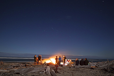 Bonfire with driftwood on the beach, group of people around a bonfire, west coast, South Island, New Zealand