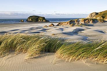 Wave-like sand dunes at Wharariki Beach, South Island, New Zealand