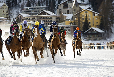 White Turf Horse Race 2013, St. Moritz, Engadine valley, Upper Engadin, Canton of Graubuenden, Switzerland