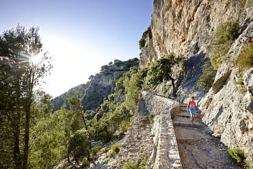 Bike and foot path leading up to Castell Alaro, on Puig D`Alaro, near village Alaro, Tramuntana, Mallorca, Balearic Islands, Spain