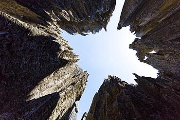 Tsingy-de-Bemaraha National Park, view up, Mahajanga, Madagascar, Africa