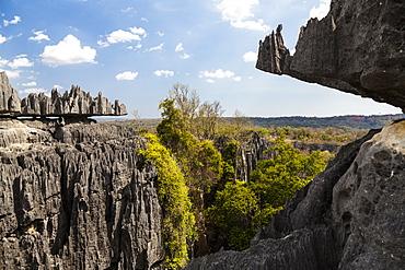 Tsingy-de-Bemaraha National Park, Mahajanga, Madagascar, Africa