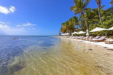 Beach with tourists, Little Palm Island Resort, Florida Keys, USA