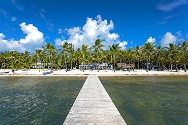 Beach at the Moorings Village Resort, Islamorada, Florida Keys, Florida, USA
