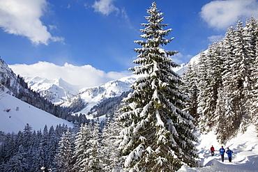 Hikers in a winter landscape at Hintersteiner Tal near Bad Hindelang, Allgaeu, Bavaria, Germany