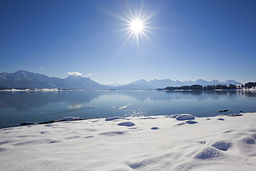 Lake Forggensee with view to the Allgaeu Alps with Tegelberg, Saeuling and Tannheimer Berge, Allgaeu, Bavaria, Germany