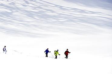 Snow shoe hikers, Hinterzarten, Black Forest, Baden-Wuerttemberg, Germany