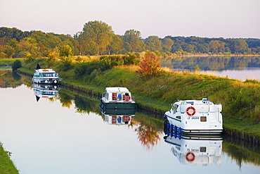 Summer morning on the Canal de la Marne au Rhin at Gondrexange, Houseboat, Moselle, Region Alsace Lorraine, France, Europe