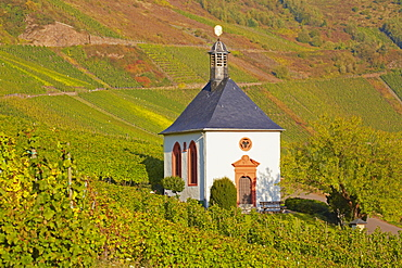 Chapel Grabkapelle Kesselstatt at Kroev, Mosel, Rhineland-Palatinate, Germany, Europe