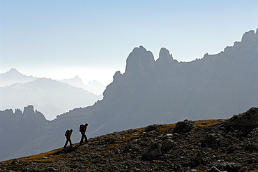 Couple hiking in the mountains, Val di Fassa, Rosengarten, Dolomites, Trento, South Tyrol, Italy