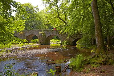 View of the old stone bridge across the river Grosse Nister, Nistertal, Abtei Marienstatt, Westerwald, Rhineland-Palatinate, Germany, Europe