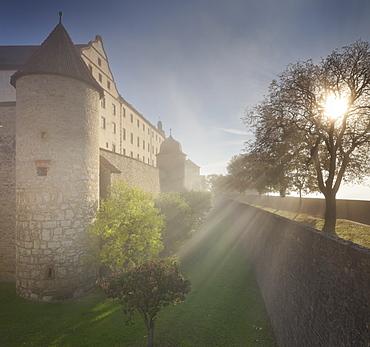 Marienberg fortress surounded by fog, Wuerzburg, Bavaria, Germany