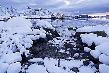 Reine in the evening light, Reine, Moskenesoya, Lofoten, Nordland, Norway