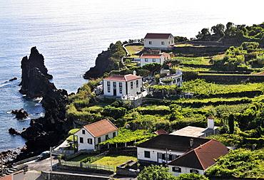 Holiday cottages in Faja do Ouvidor, North coast, Island of Sao Jorge, Azores, Portugal
