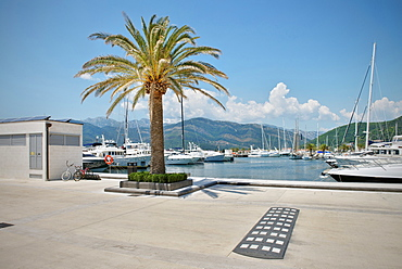 Port of Montenegro, new luxury Yacht Port, Tivat, Bay of Kotor, Adriatic coastline, Montenegro, Western Balkan, Europe