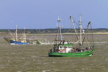 Fishing boats off Langeoog Island, North Sea, East Frisian Islands, East Frisia, Lower Saxony, Germany, Europe