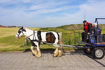 Horse and cart luggage service, Juist Island, Nationalpark, North Sea, East Frisian Islands, East Frisia, Lower Saxony, Germany, Europe
