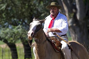 Gaucho riding a horse, Estancia Santa Susana, Los Cardales, Provincia de Buenos Aires, Argentina