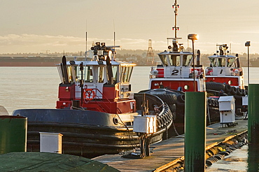 Charles H. Cates tugboats in Burrard Inlet at sunset, North Vancouver, British Columbia, Canada